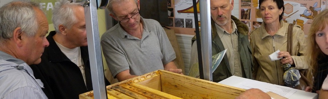 Jsme v kontaktu s včelaři